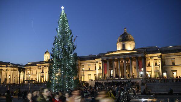 Главная рождественская ель в Лондоне - Sputnik Արմենիա