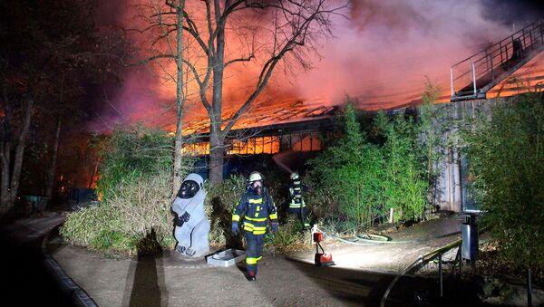 Пожарные около горящего приюта обезьян в зоопарке Крефельд (1 января 2020). Германия - Sputnik Արմենիա