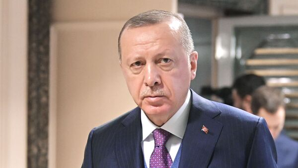 Рабочий визит президента РФ В. Путина в Турецкую Республику - Sputnik Արմենիա
