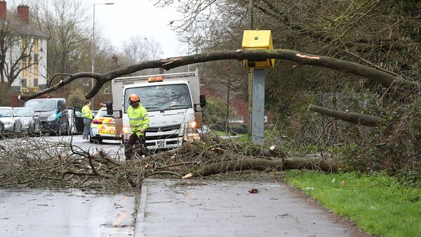 Рабочие пытаются убрать упавшее на камеры слежения дерево после прохождения шторма Сиара (9 февраля 2020). Тайлхерст, Англия - Sputnik Армения