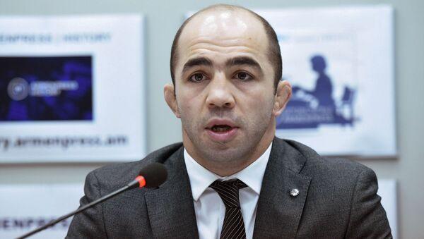 Арсен Джулфалакян на пресс-конференции  (26.2.2020). Еревaн - Sputnik Արմենիա