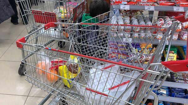 Тележка с покупками в супермаркете - Sputnik Армения