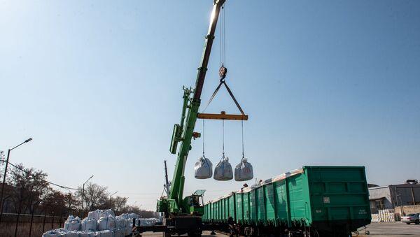Ввод в строй новых вагонов Южно-Кавказской железной дороги для перевозки руды (9 марта 2020). Еревaн - Sputnik Արմենիա