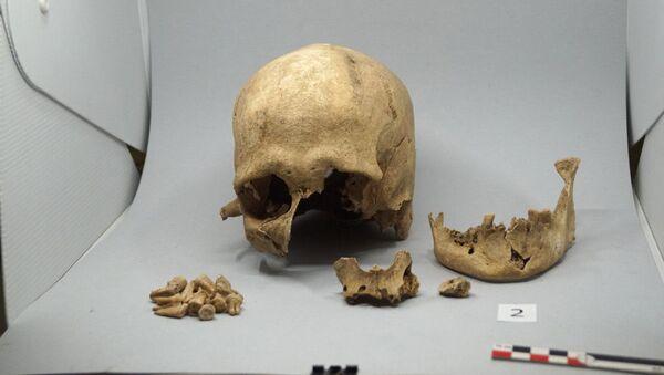 Восстановление антропологических материалов, обнаруженных во время раскопок в Артанише - Sputnik Армения