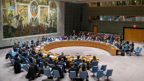 Совет Безопасности ООН проводит заседание по Ближнему Востоку (20 ноября 2019). Нью-Йорк - Sputnik Армения