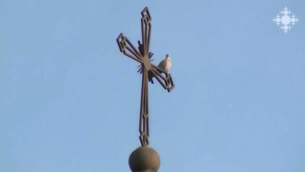 Голубь на кресте церкви - Sputnik Արմենիա