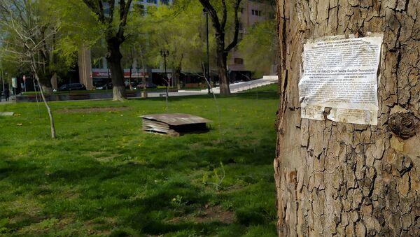 Объявление на стволе дерева - Sputnik Արմենիա
