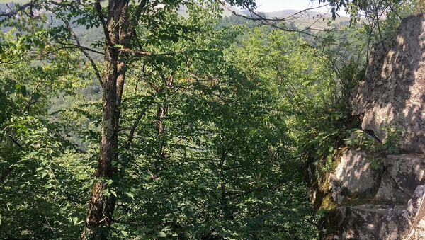 Ущелье близ Агарцина - Sputnik Արմենիա