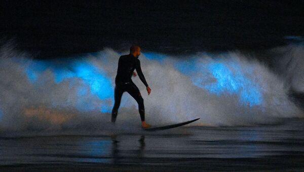 Серфер катается на волне, освещенной биолюминесцентным планктоном (30 апреля 2020). Ньюпорт-Бич, Калифорния - Sputnik Արմենիա
