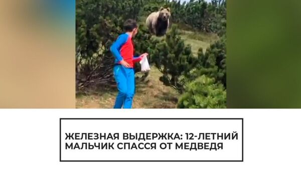 12-летний мальчик спасся от медведя - Sputnik Армения