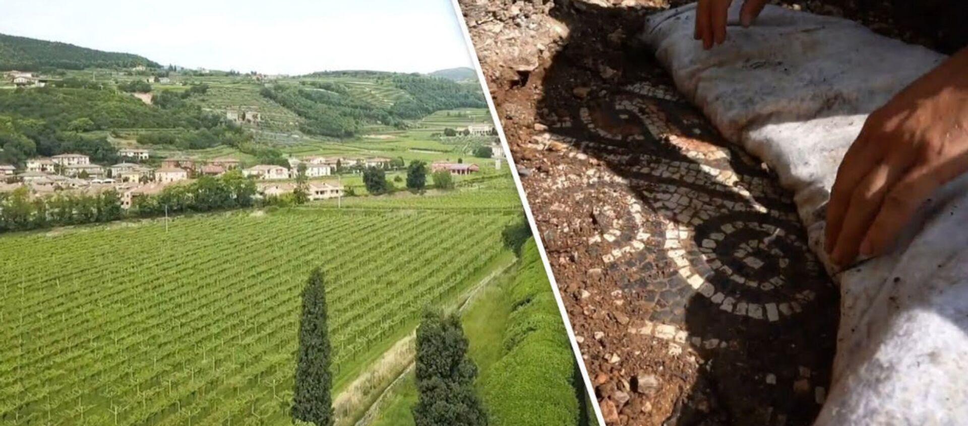 «Крупнейшее открытие года»: итальянские археологи обнаружили античную мозаику под виноградниками - Sputnik Армения, 1920, 31.05.2020