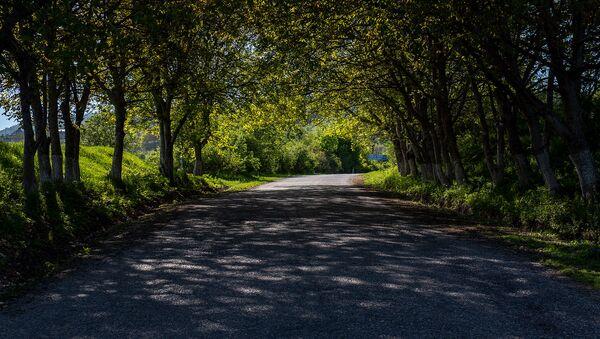 Дорога в село Енокаван - Sputnik Армения