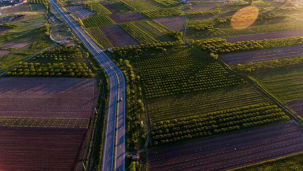 Сельскохозяйственные земли в Армавире - Sputnik Армения