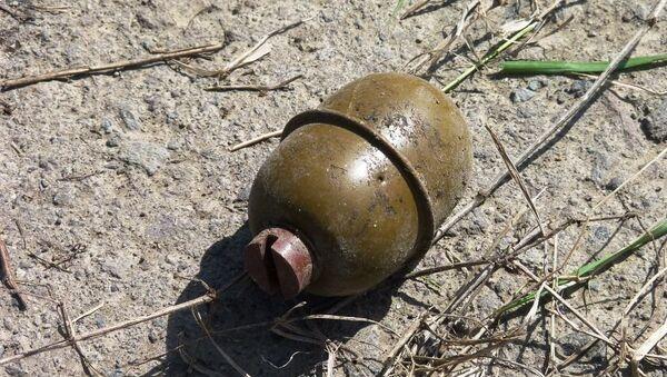 Նռնակ է հայտնաբերվել - Sputnik Армения