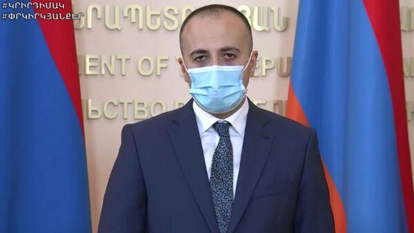 Министр здравоохранения Арсен Торосян на онлайн брифинге (22 июня 2020). Еревaн - Sputnik Արմենիա