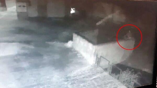 Տեսանյութում պատկերված քաղաքացին գետն է գցում Մյասնիկյան պողոտայի երկու աղբամանները - Sputnik Արմենիա