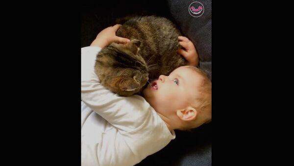 Ребенок убеждает котенка - Sputnik Արմենիա