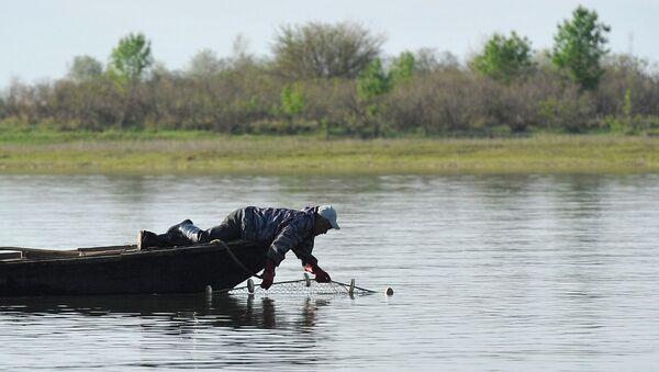 Лов рыбы, рыбалка - Sputnik Արմենիա