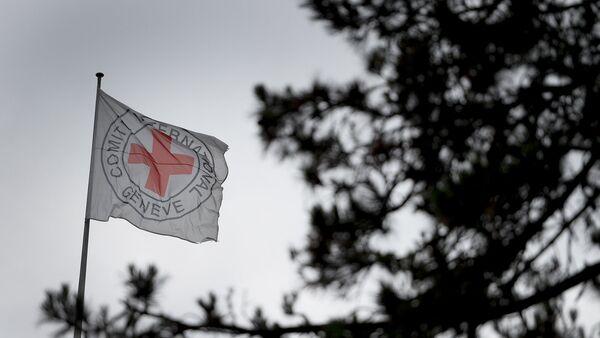 Флаг организации Красного креста - Sputnik Արմենիա