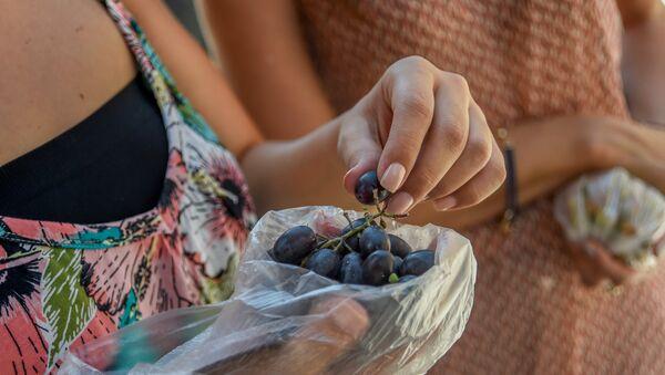 Чин освящения винограда - Sputnik Արմենիա