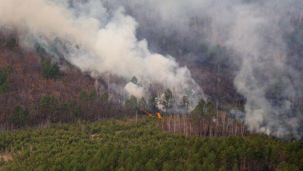 Природные пожары - Sputnik Армения