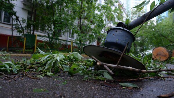 Последствия урагана в Москве - Sputnik Армения