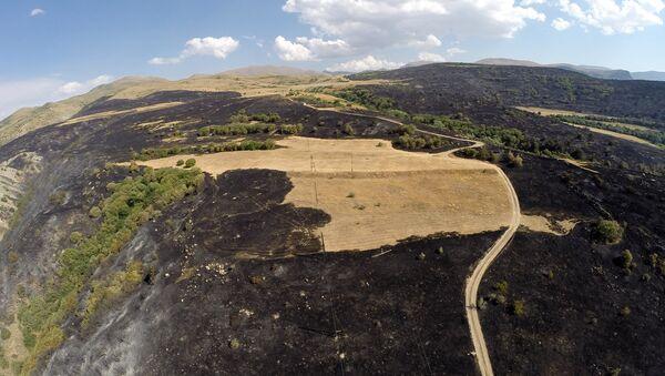 Пожар в Артаване. Съемка с дрона - Sputnik Армения