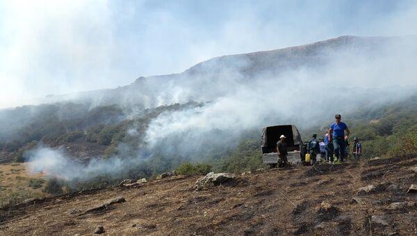 Пожар в Хосровском лесу.Сотрудники МЧС РА - Sputnik Արմենիա