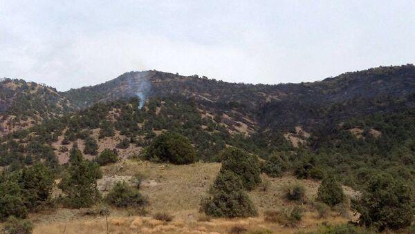 Пожар в Хосровском лесу - Sputnik Արմենիա