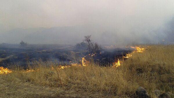 Пожар в Бюракане - Sputnik Армения