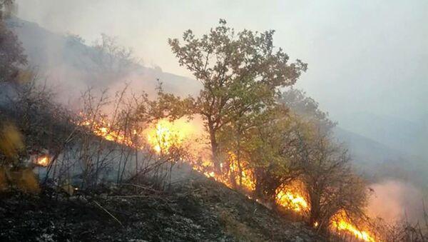 Пожар в комплексе Зангезур - Sputnik Армения