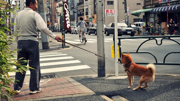 Японец с собакой - Sputnik Армения