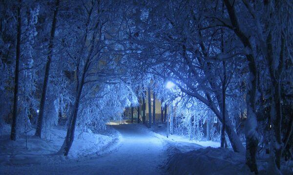 Ձմեռային գիշեր - Sputnik Արմենիա
